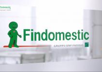 Numero Verde Findomestic: Ecco Tutto Quello Che Devi Sapere sul Servizio Clienti di Findomestic